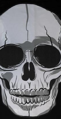 Bandana Hupi Skull